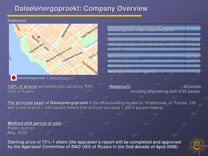 Dalselenergoproekt: Company Overview