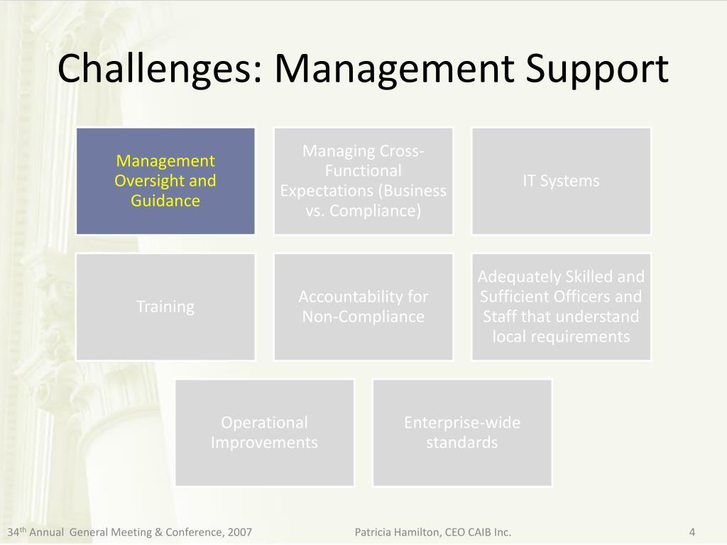 Challenges: Management Support