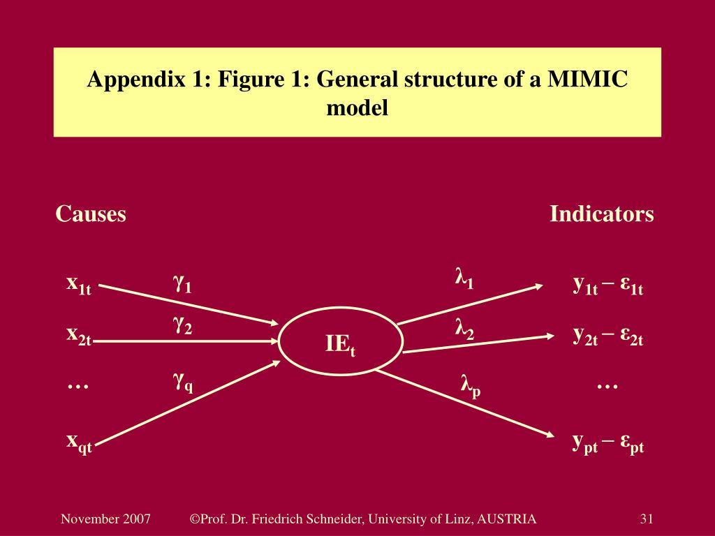 Appendix 1: Figure 1: General structure of a MIMIC model