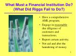 what must a financial institution do what did riggs fail to do