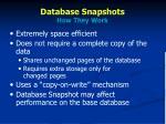 database snapshots how they work