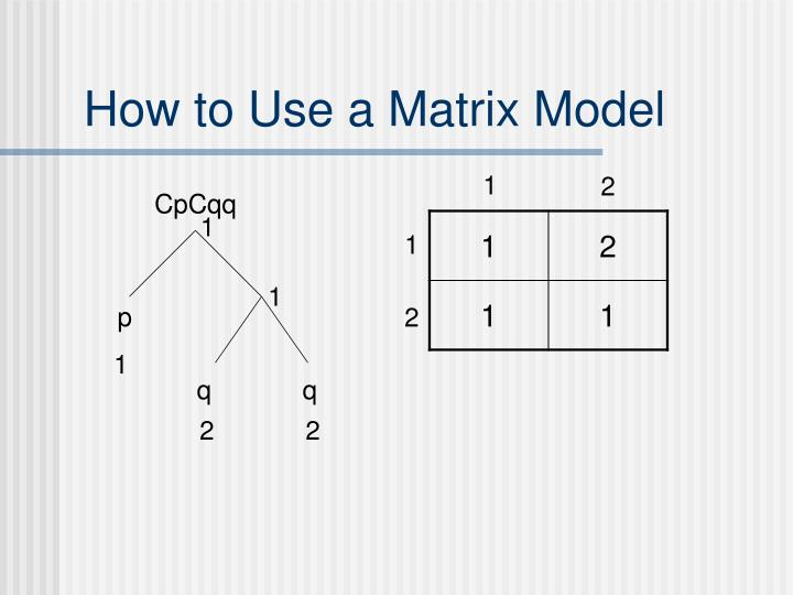 How to Use a Matrix Model