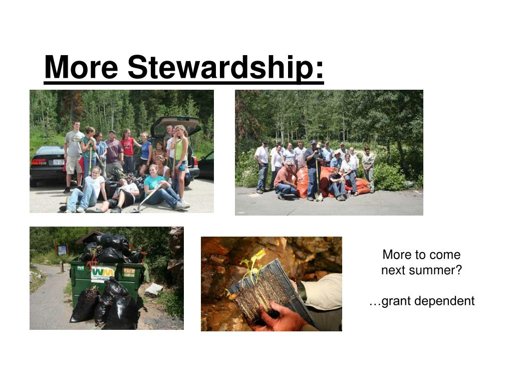 More Stewardship:
