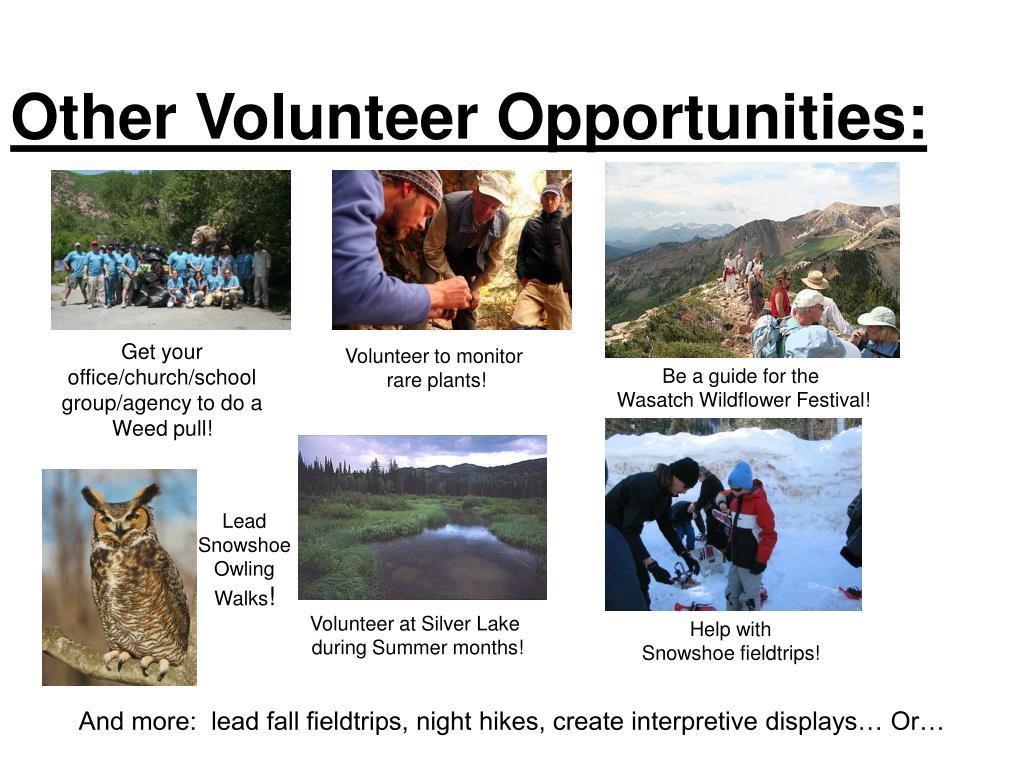 Other Volunteer Opportunities: