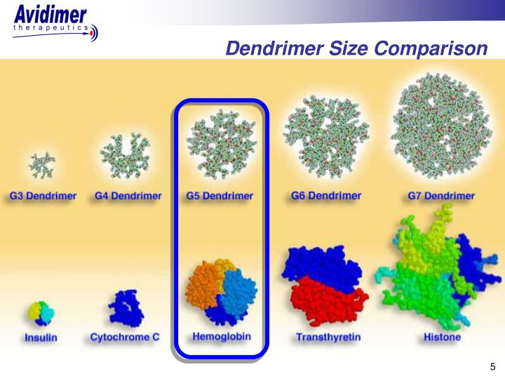 Dendrimer Size Comparison