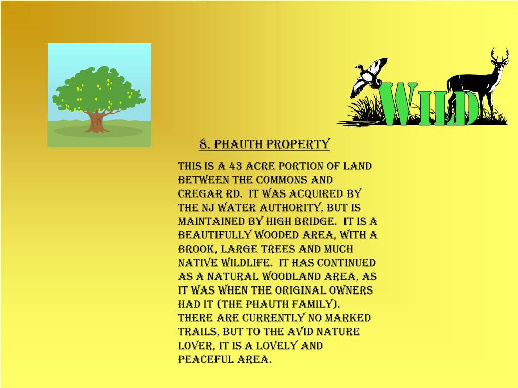 8. Phauth Property
