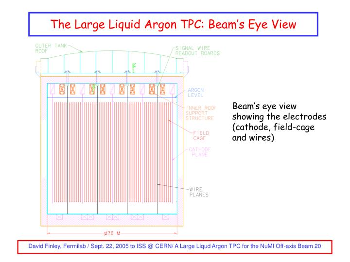 The Large Liquid Argon TPC: Beam's Eye View