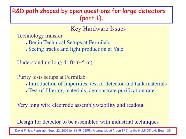 R&D path shaped by open questions for large detectors