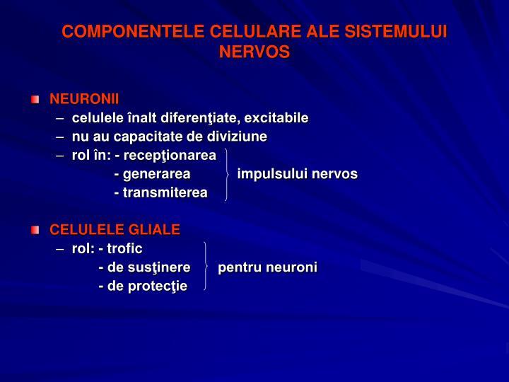 COMPONENTELE CELULARE ALE SISTEMULUI NERVOS