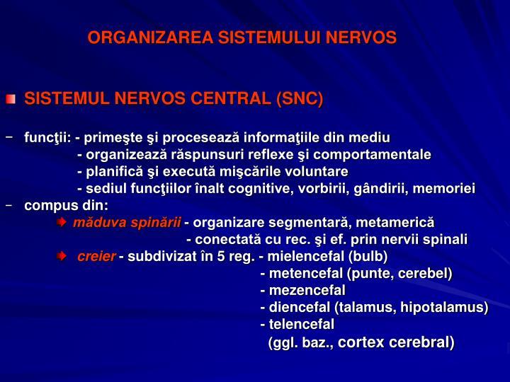 ORGANIZAREA SISTEMULUI NERVOS