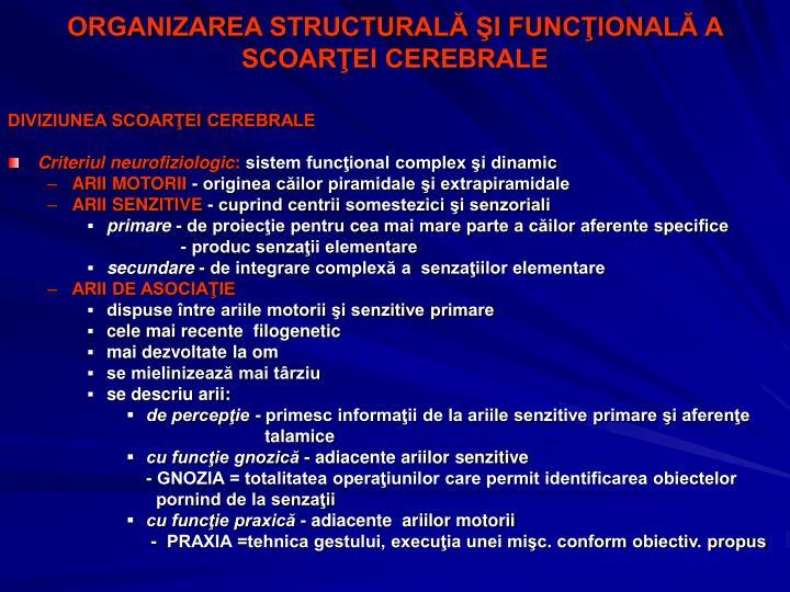 ORGANIZAREA STRUCTURALĂ ŞI FUNCŢIONALĂ A SCOARŢEI CEREBRALE