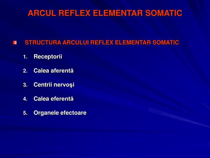 ARCUL REFLEX ELEMENTAR SOMATIC