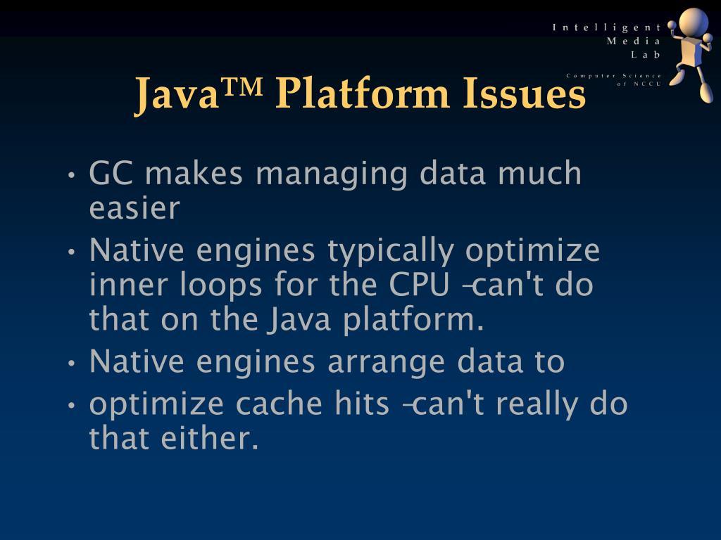 Java™ Platform Issues