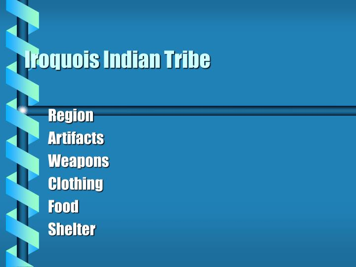 Iroquois Indian Tribe