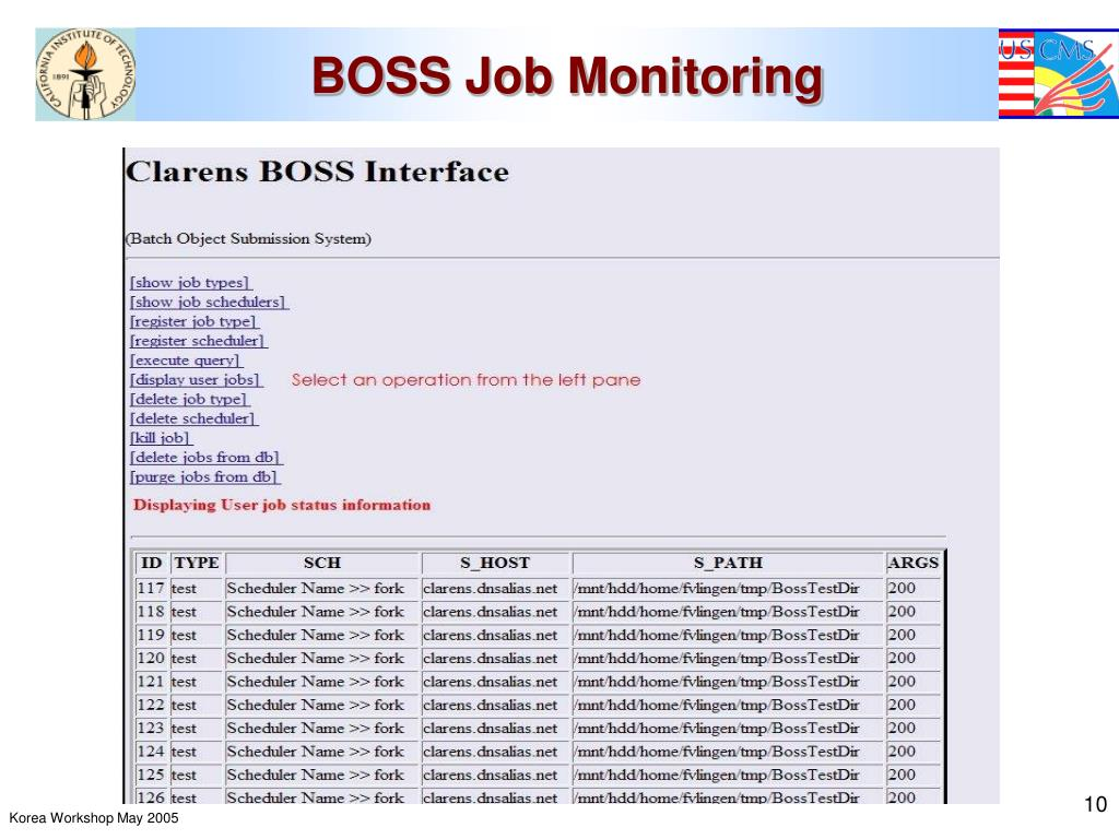 BOSS Job Monitoring