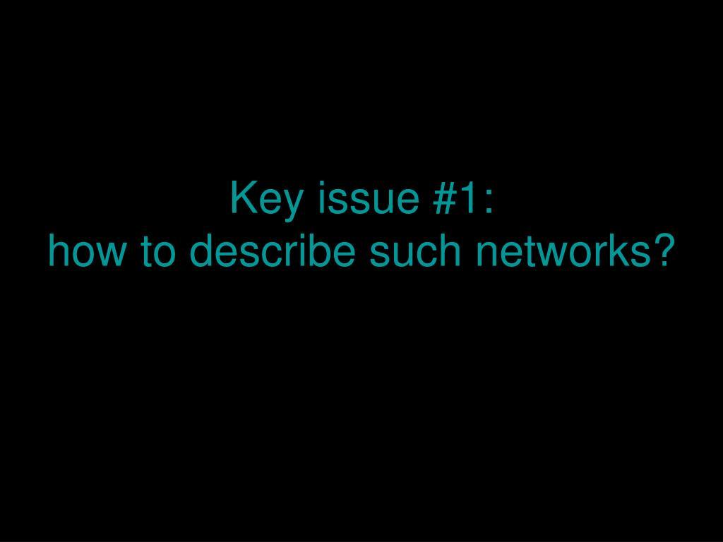 Key issue #1: