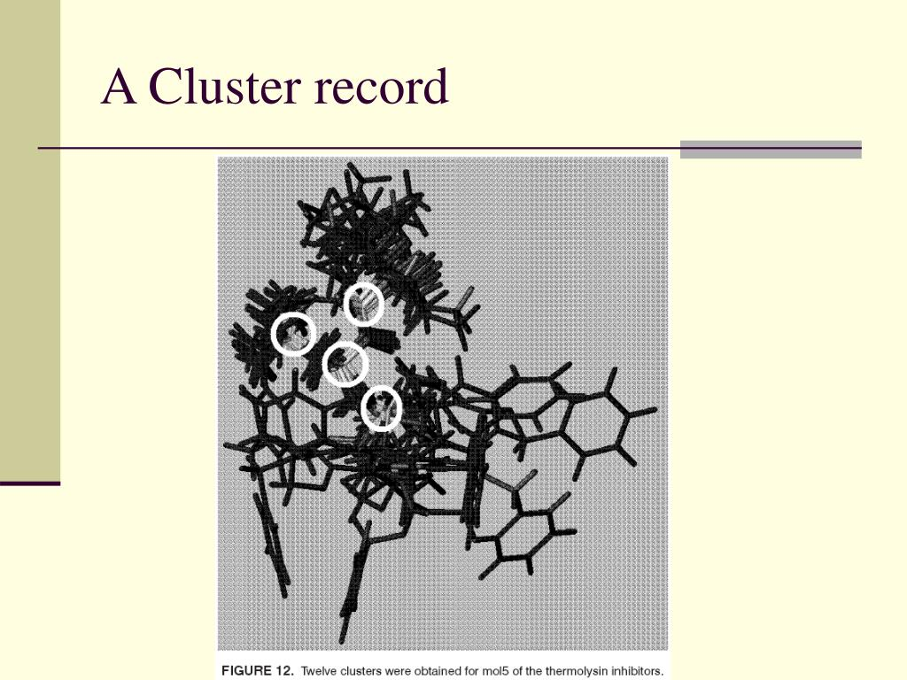 A Cluster record