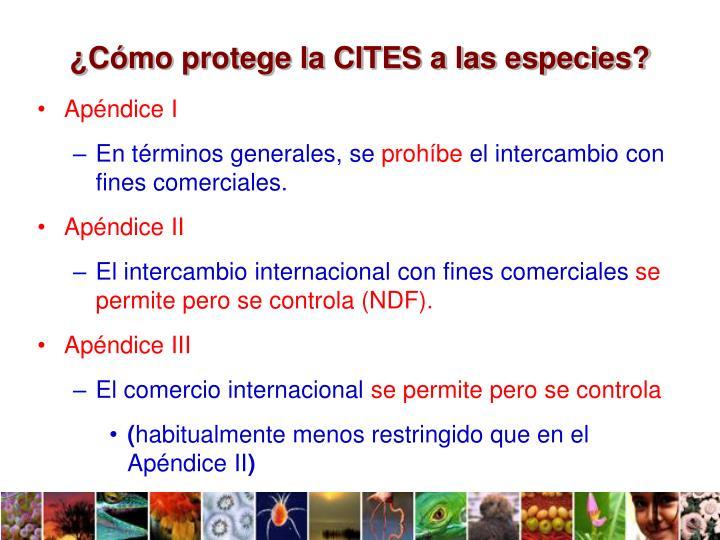 ¿Cómo protege la CITES a las especies?