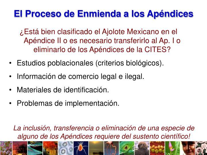 El Proceso de Enmienda a los Apéndices