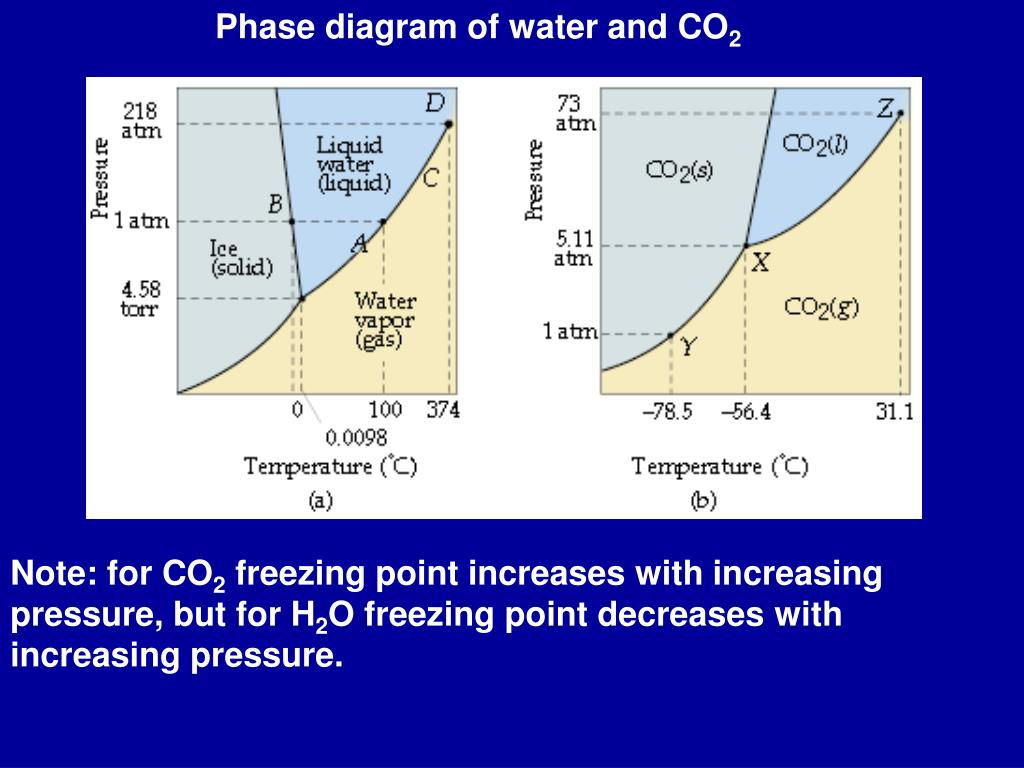 Phase diagram of water and CO