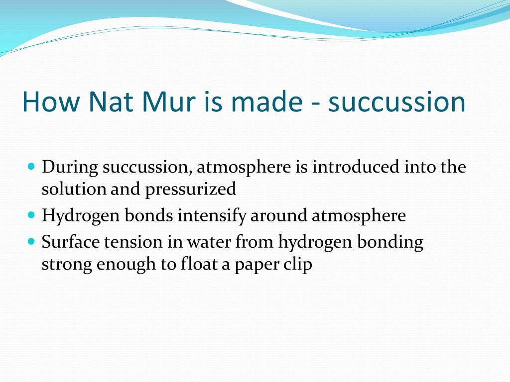 How Nat Mur is made - succussion