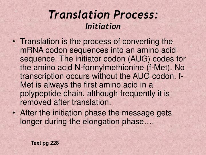 Translation Process: