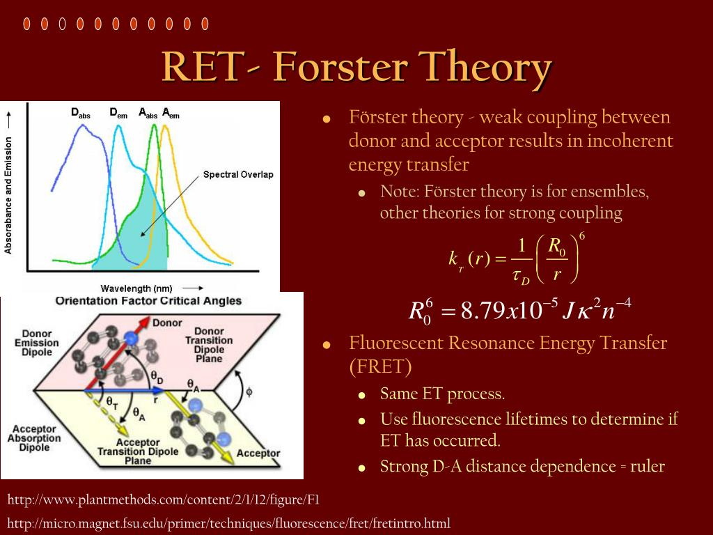RET- Forster Theory