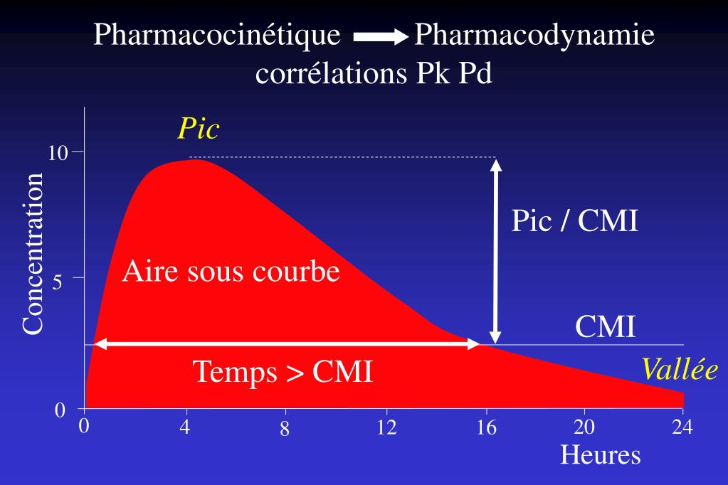 Pharmacocinétique         Pharmacodynamie