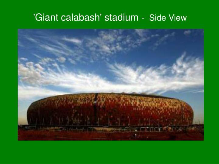 'Giant calabash' stadium