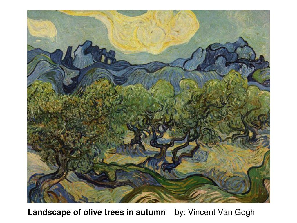 Landscape of olive trees in autumn
