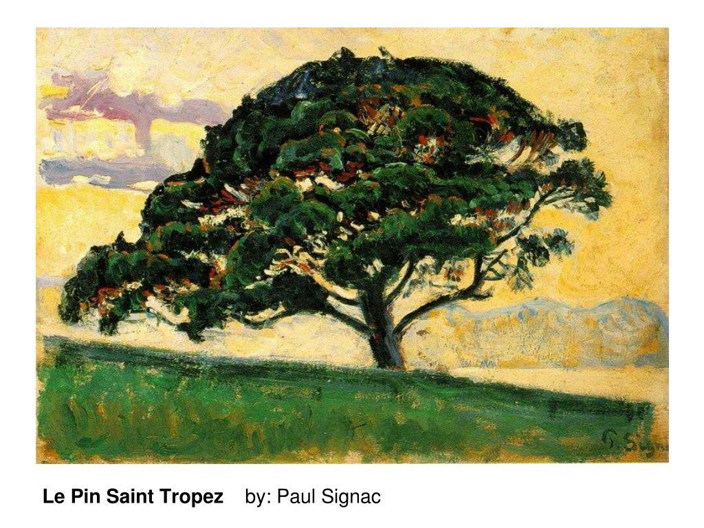 Le Pin Saint Tropez