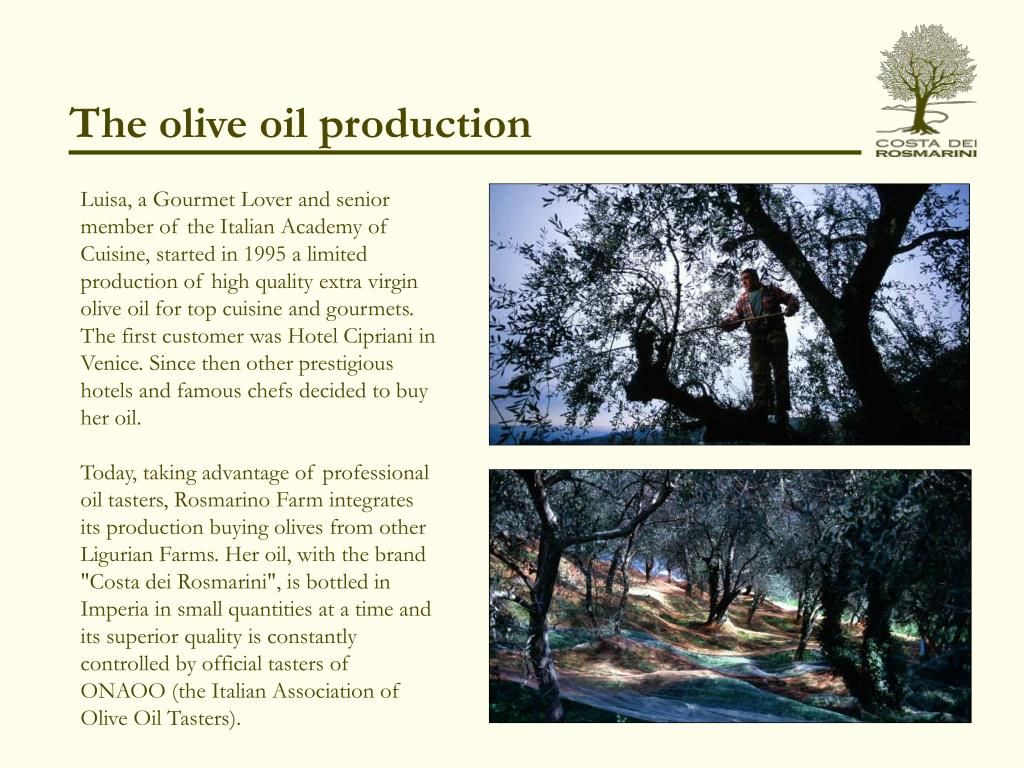 The olive oil production