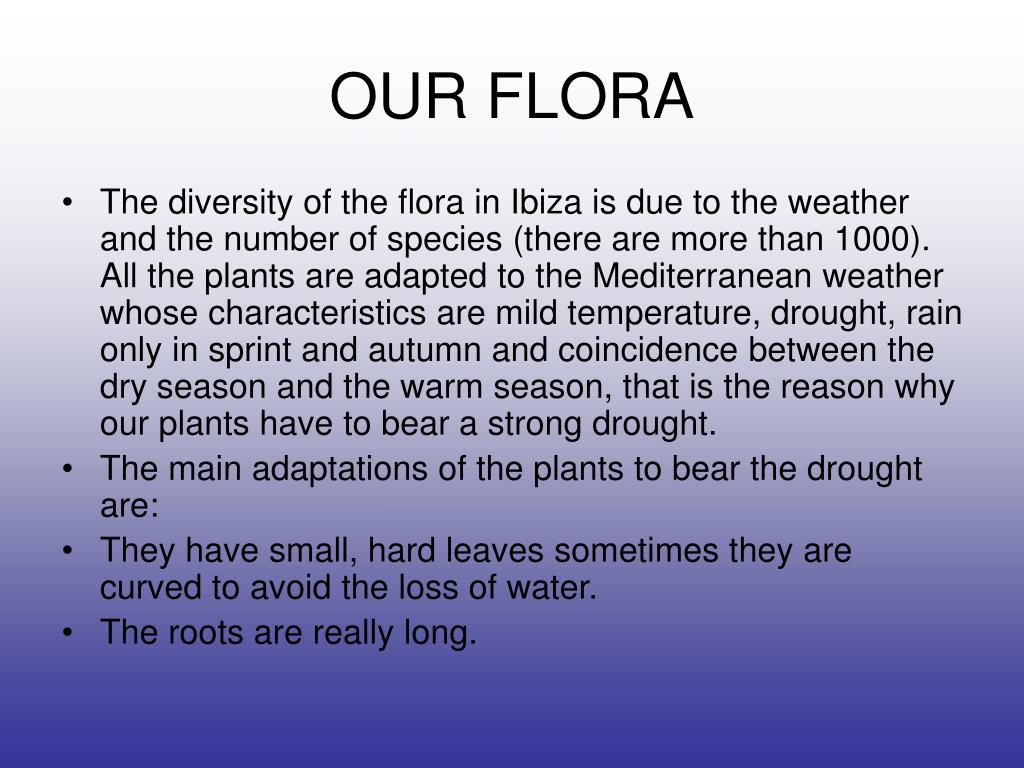 OUR FLORA