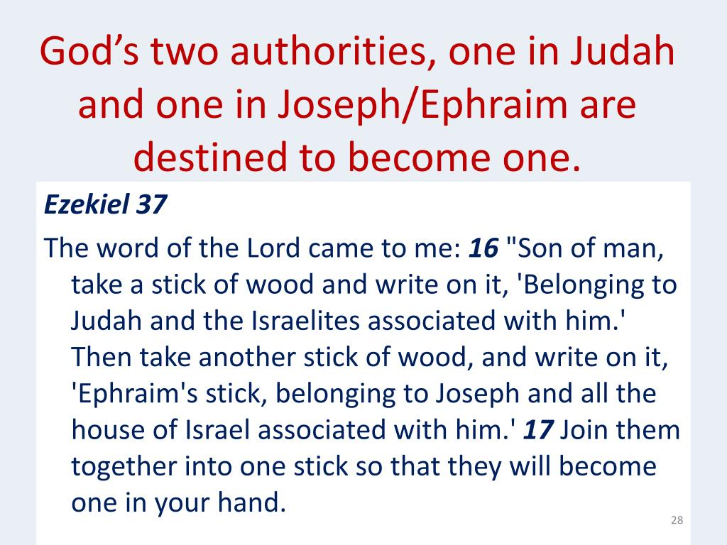 God's two authorities, one in Judah and one in Joseph/Ephraim are destined to become one.