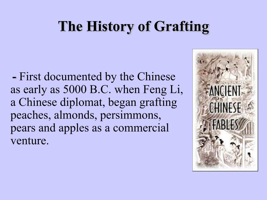 The History of Grafting