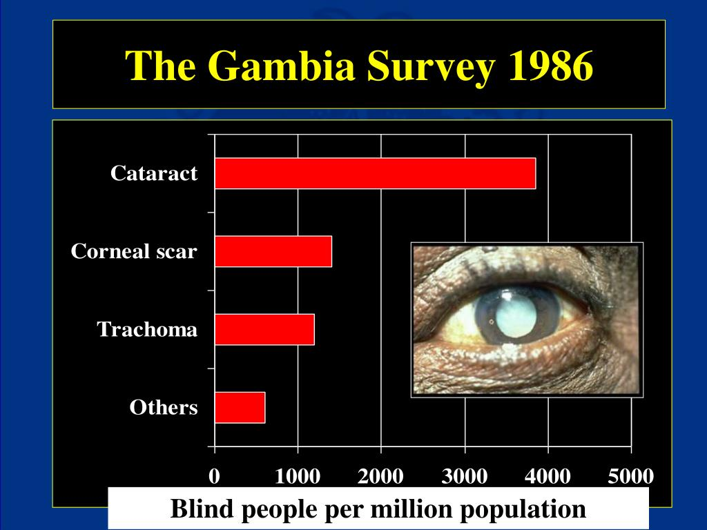 The Gambia Survey 1986