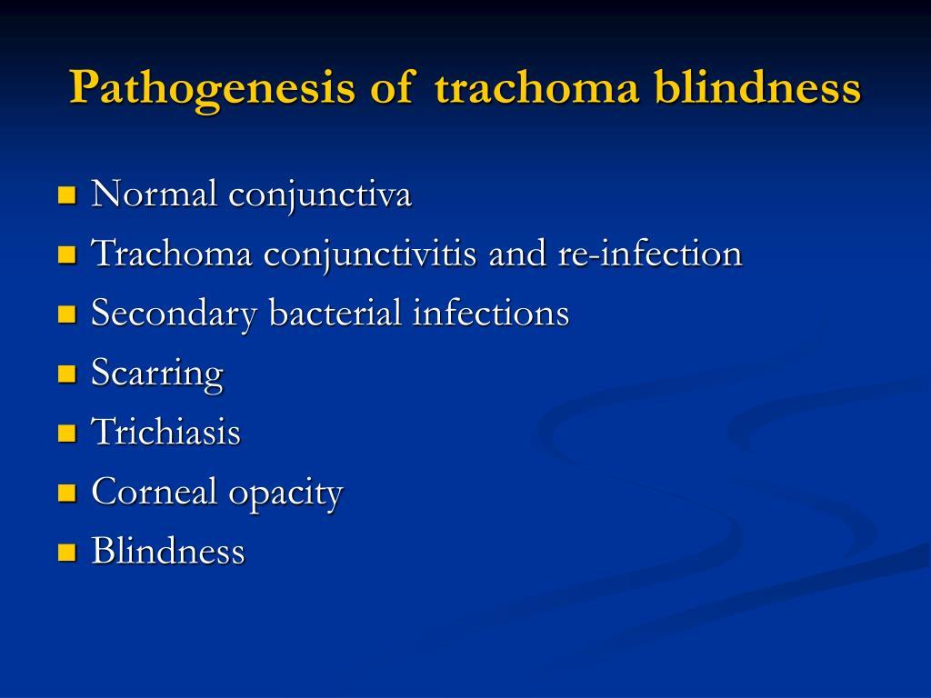Pathogenesis of trachoma blindness