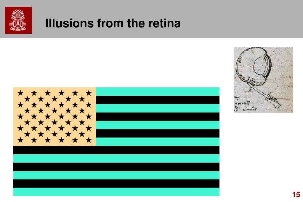 Illusions from the retina