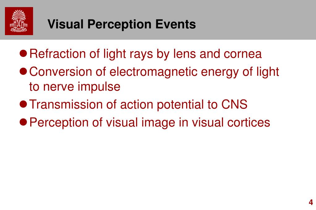 Visual Perception Events