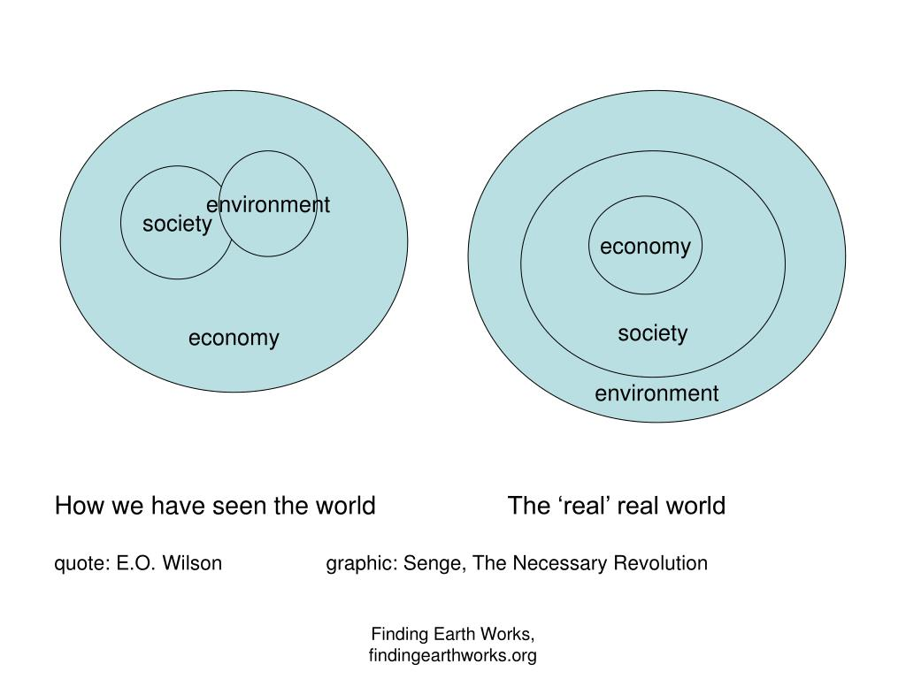 How we have seen the worldThe 'real' real world