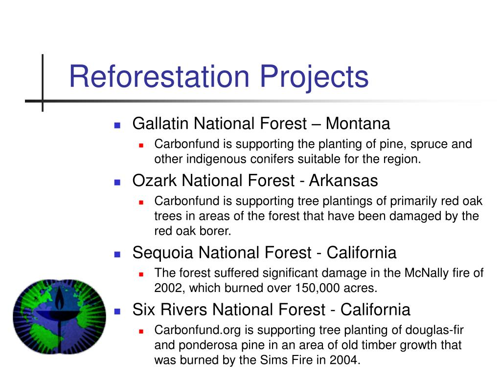 Reforestation Projects