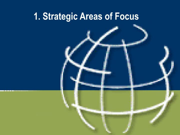 1. Strategic Areas of Focus