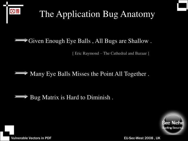 The Application Bug Anatomy