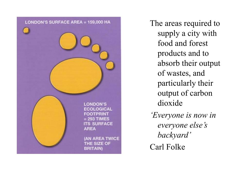 The areas required to supply a city with food and forest products and to absorb their output of wastes, and particularly their output of carbon dioxide