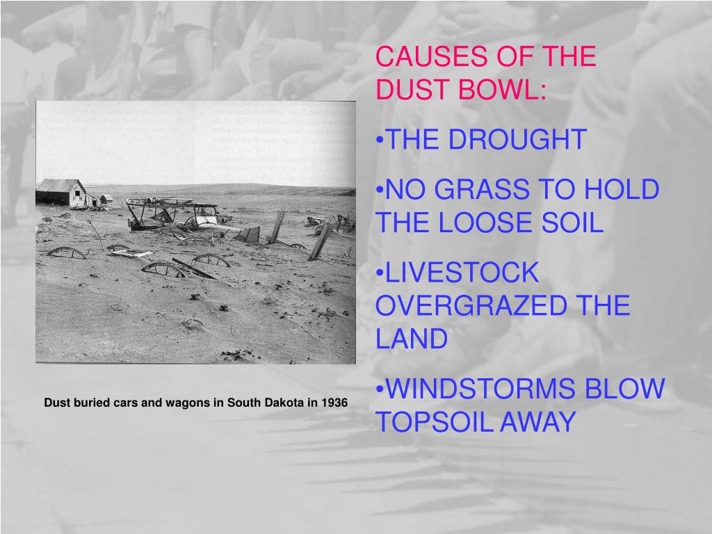 CAUSES OF THE DUST BOWL: