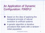 an application of dynamic configuration firefly