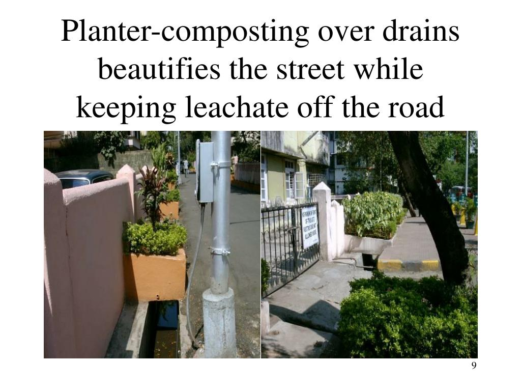 Planter-composting over drains beautifies the street while keeping leachate off the road
