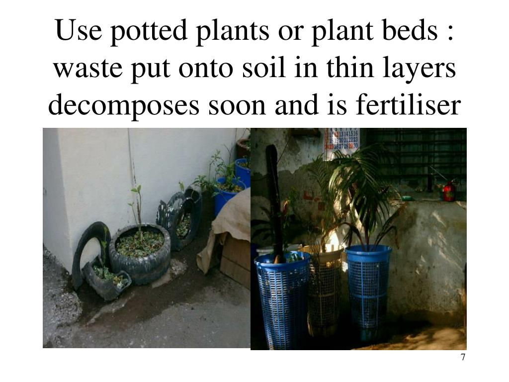 Use potted plants or plant beds : waste put onto soil in thin layers decomposes soon and is fertiliser