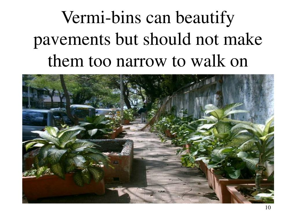 Vermi-bins can beautify pavements but should not make them too narrow to walk on
