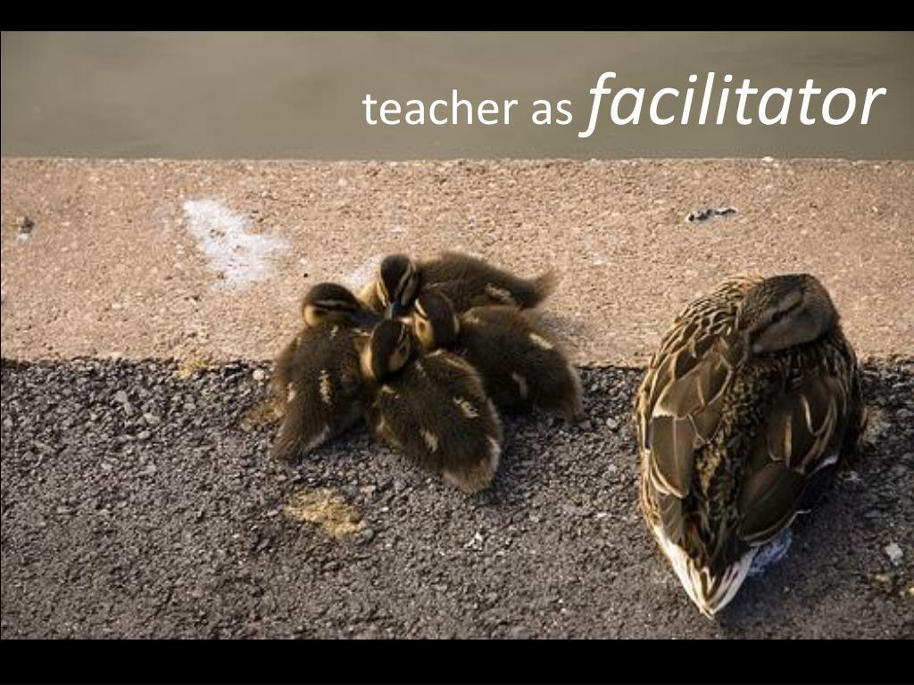 teacher as